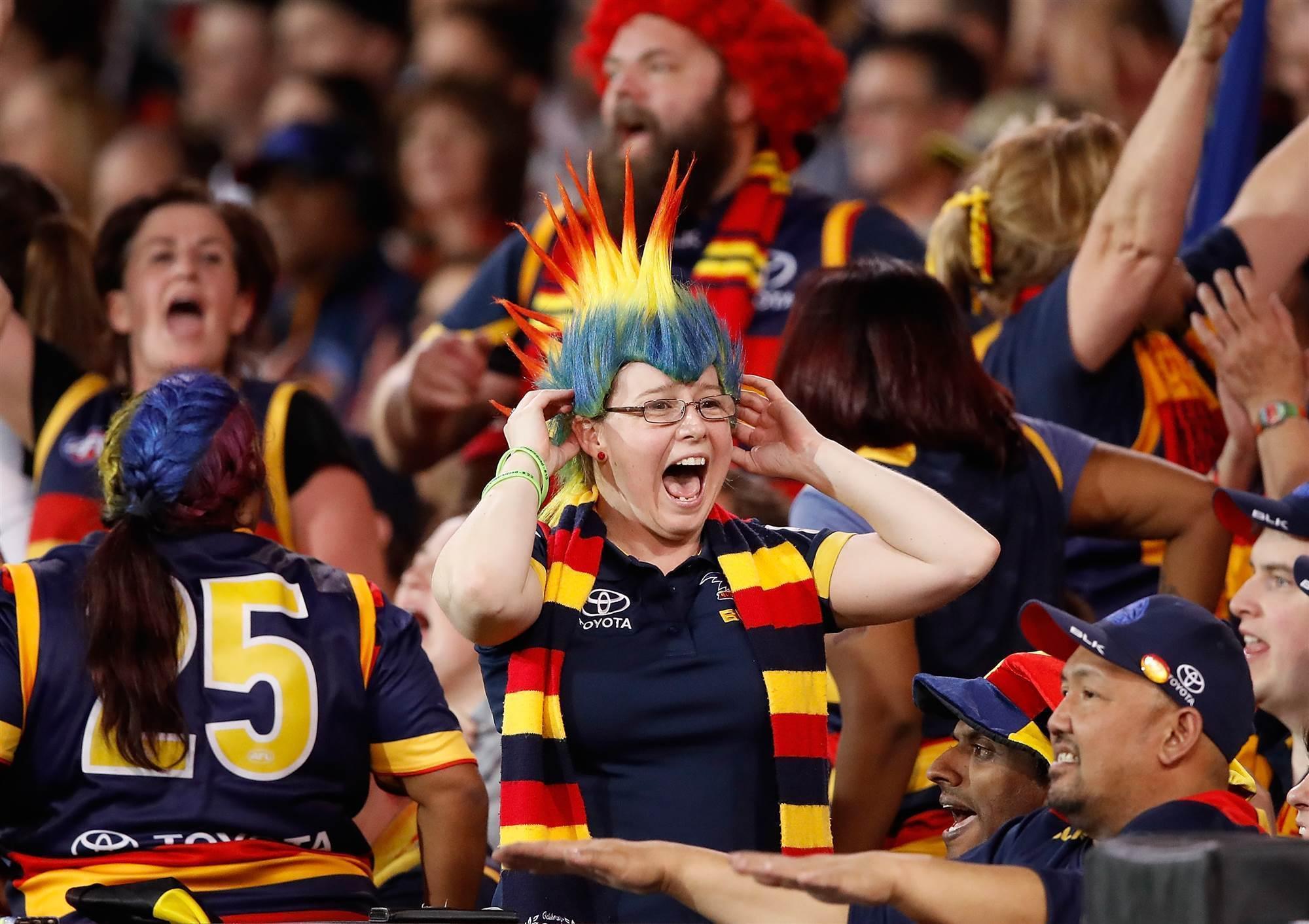 Image result for AFL fans