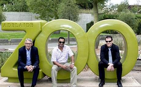 How one reseller won lion's share of Adelaide Zoo's IT