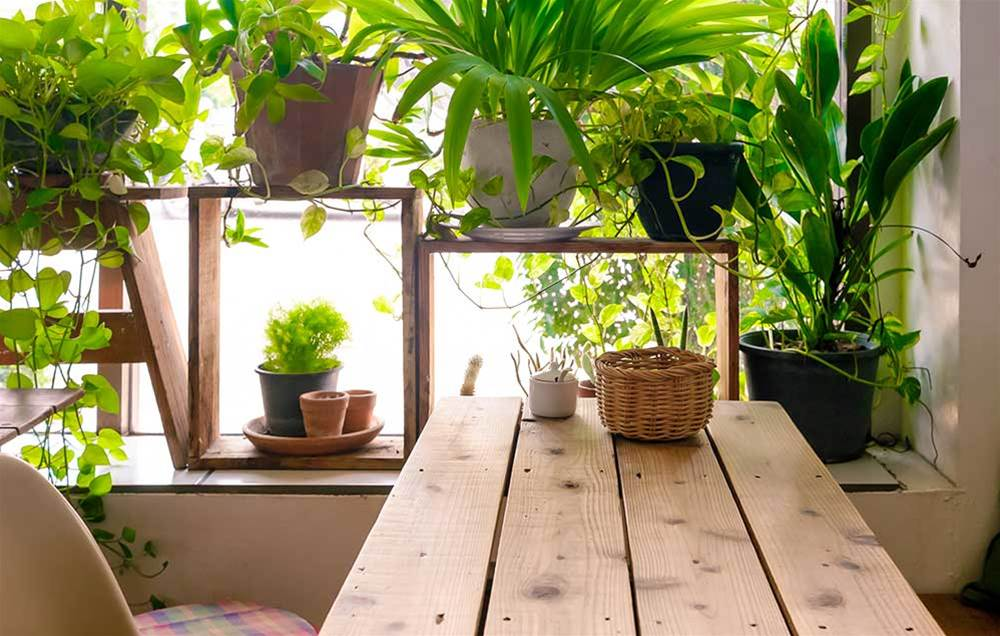 7 Simple Changes To Your Home That Fight Depression