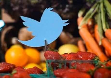 Software glitch temporarily crashes Twitter