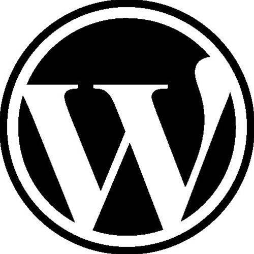 WordPress update fixes XSS issues