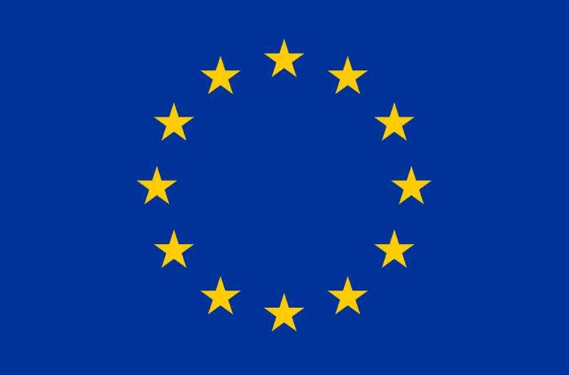 EU backs Google privacy policy 'pause'