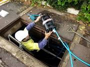 NBN Watch: Opening the information floodgates