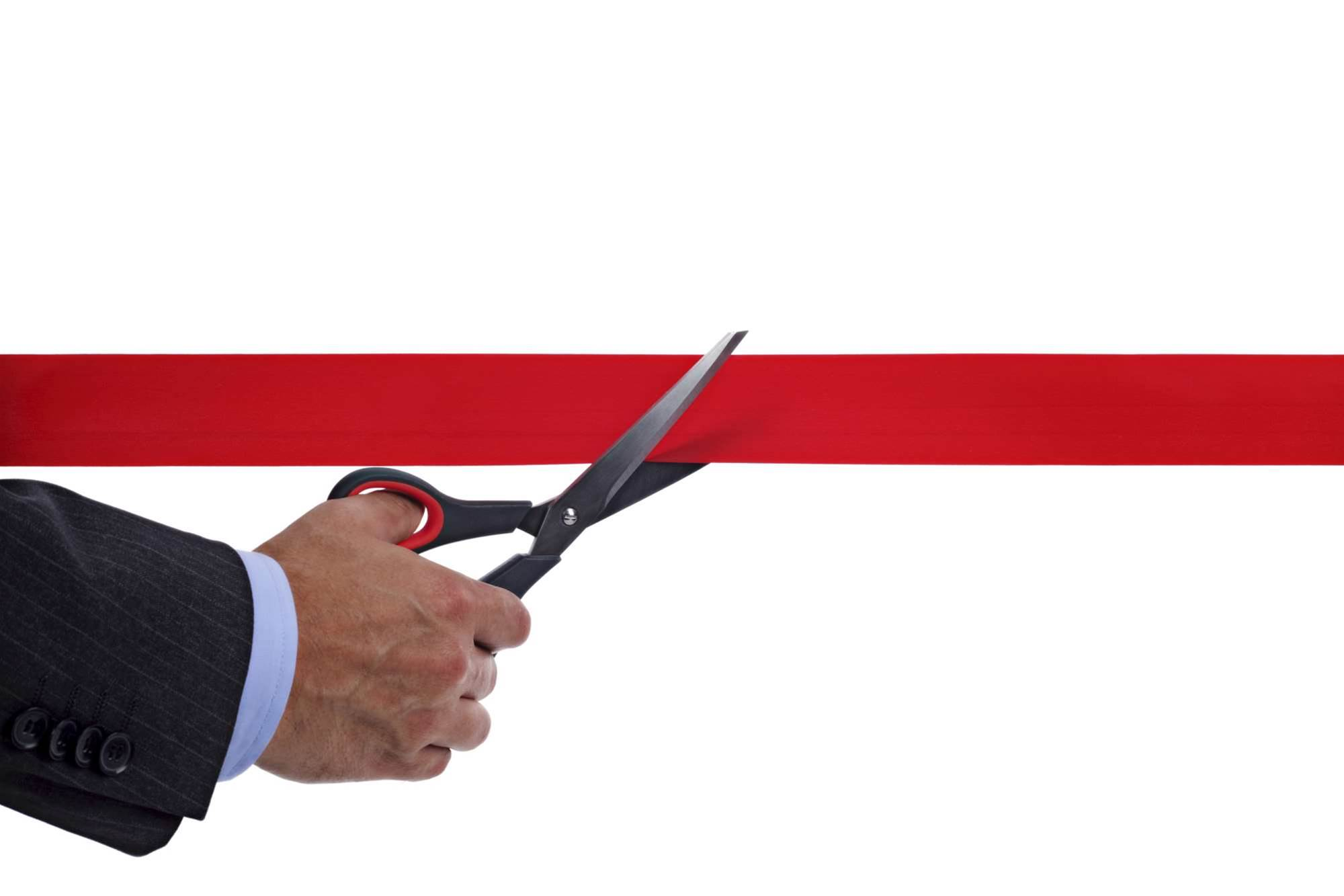 IT procurement left out of red tape repeal day