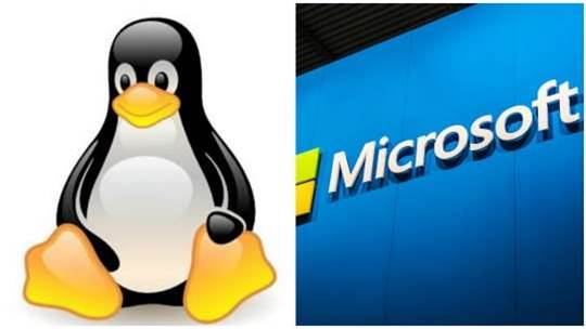 The Linux Foundation's newest member is… Microsoft