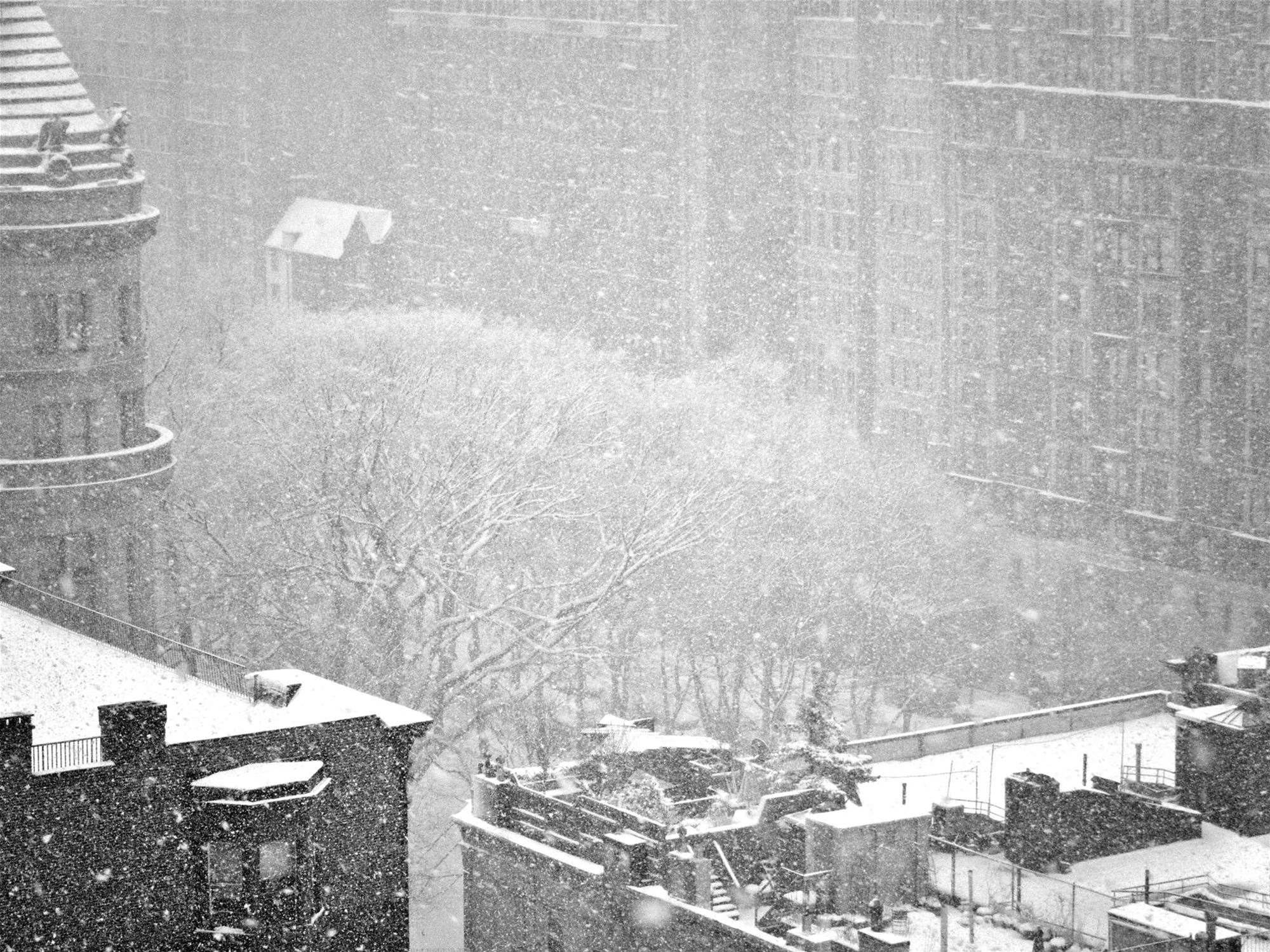 Not All Big Snowstorms Are Blizzards, But This One Is