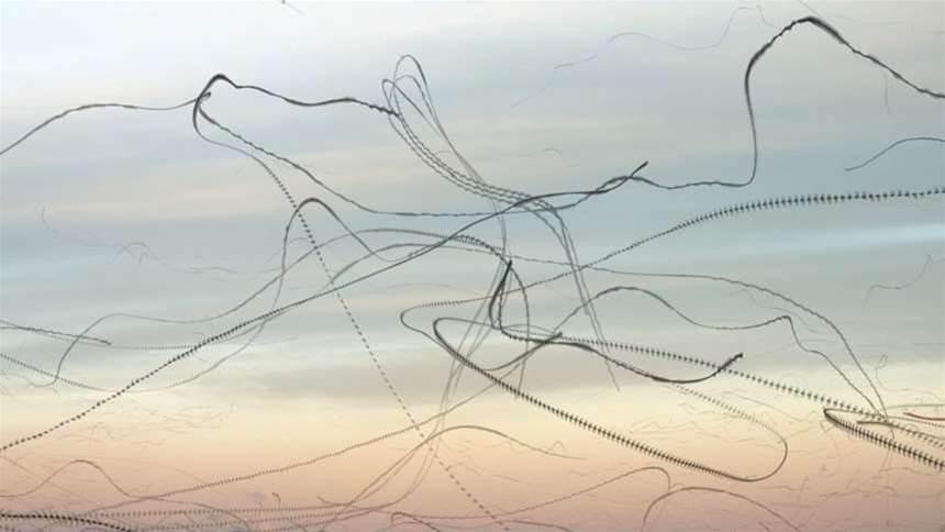 Bird flight patterns become alien scribbles in eerie photo series