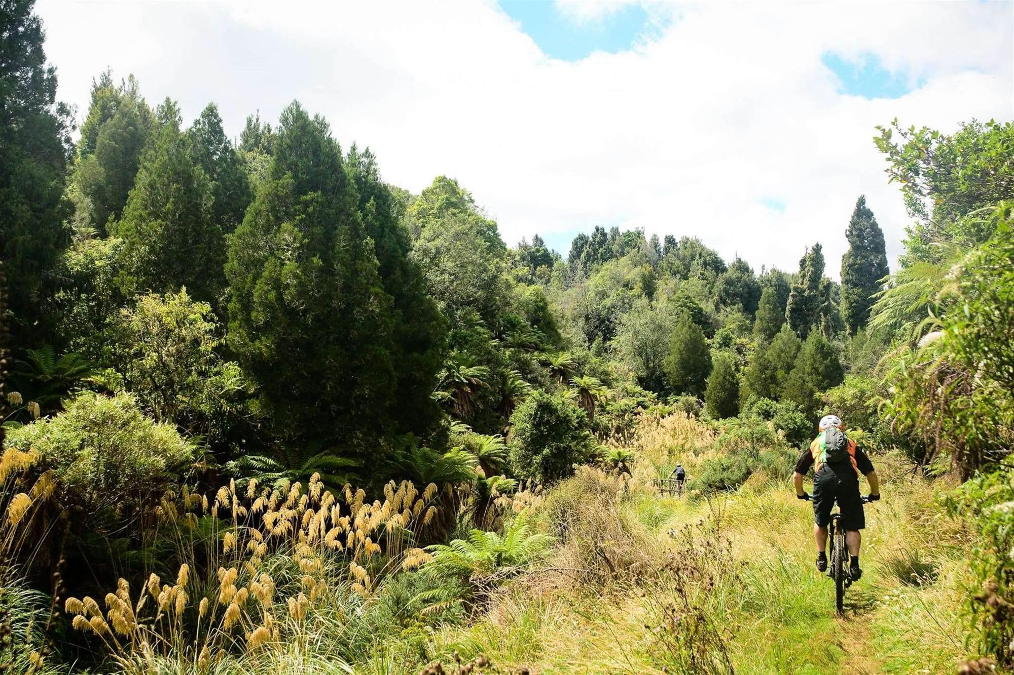Rotorua's secret mountain bike trails