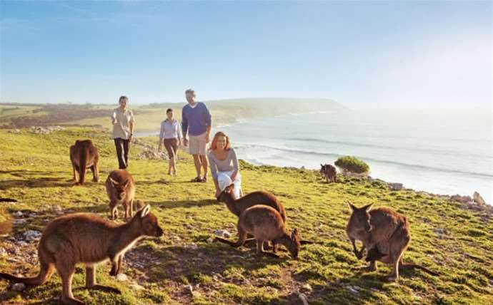 Wireless reseller ousts Telstra with Kangaroo Island wi-fi