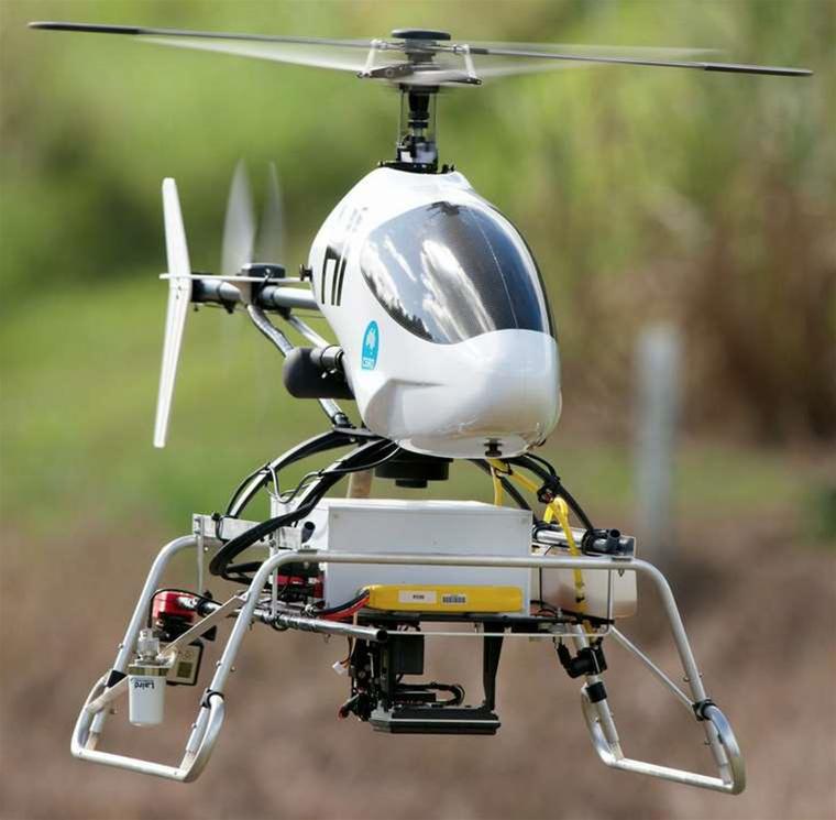 CSIRO drones tackle rainforest weeds