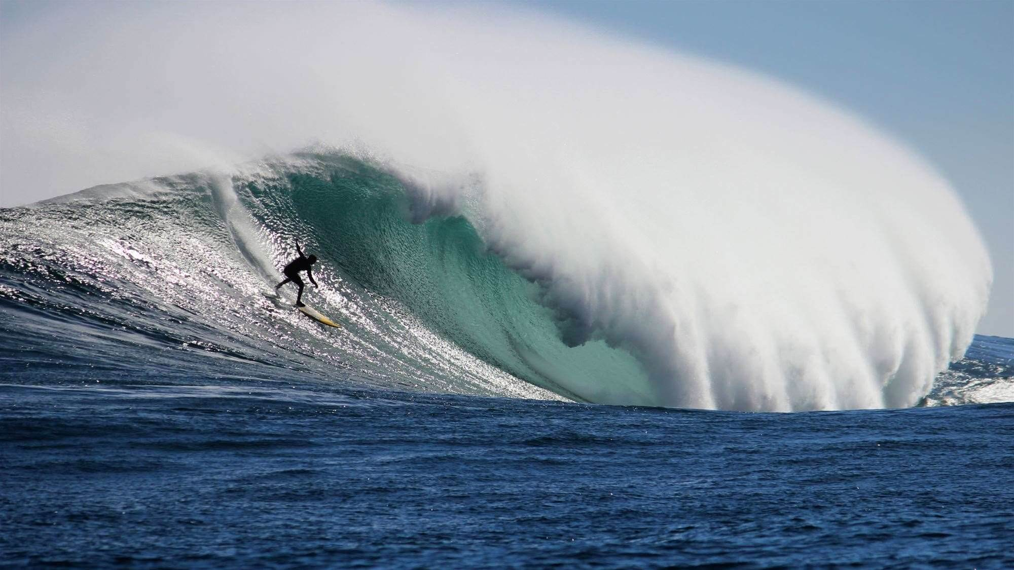 Let's Be Frank - Not Your Average Surf Movie
