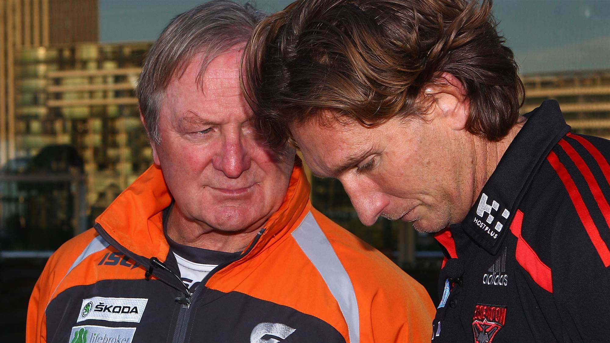 Sheedy says Hird shouldn't have been coaching