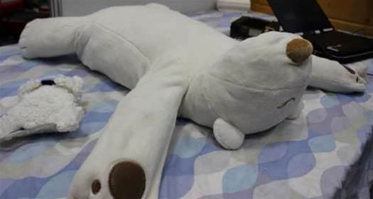 Video: Japanese Robotic Polar Bear Gently Smacks Snorers in the Face