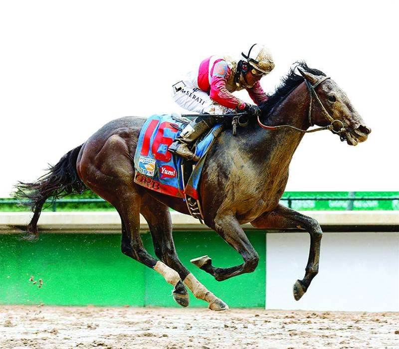 The Tech Changing Horse Racing