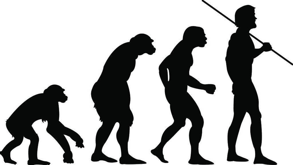 Is The Human Species Still Evolving?