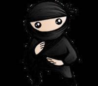 System Ninja 3.1.6 adds Duplicate File Finder