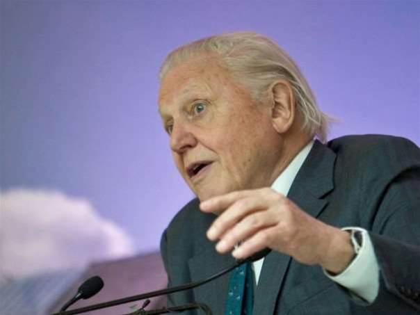 David Attenborough's next series will be optimised for Oculus Rift