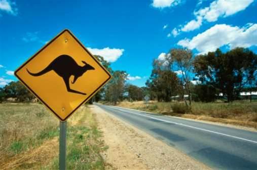Australia's national iQ is 1.65 million