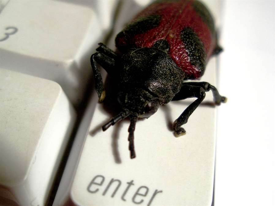 Microsoft accuses Google of early bug publication