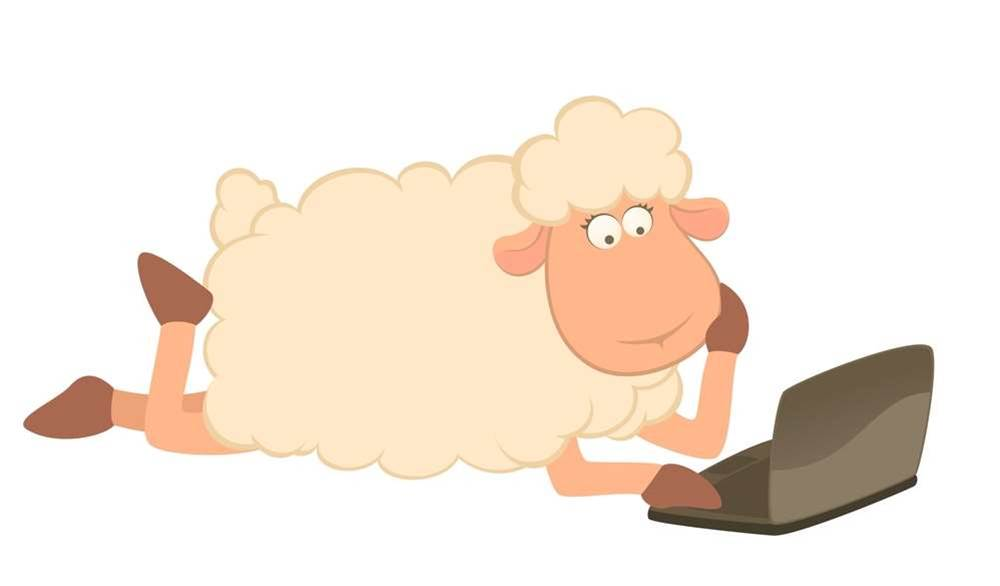 Guest column: On the Sheep's back