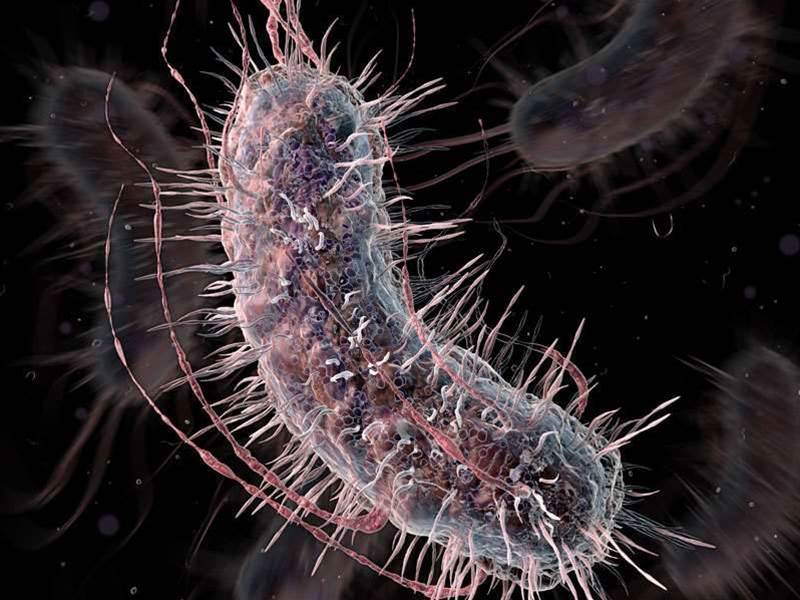 Mutant Bacteria Will Test You For Disease And Color Your Pee Accordingly