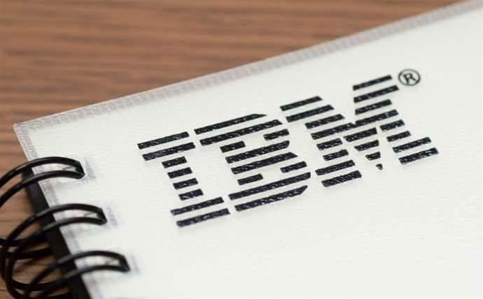 IBM breaks silence on Census fail