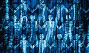 Researchers tap Google data to predict stockmarket
