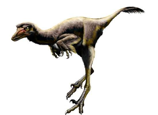 New dinosaur species uncovered in US