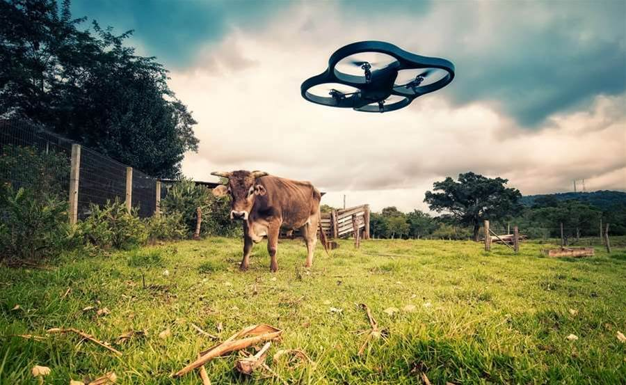 Farmers Eye Drones For The Future