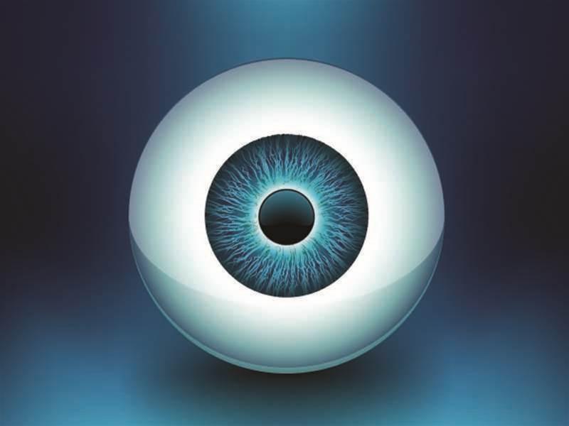 Melbourne scientists ready 2013 bionic eye trial