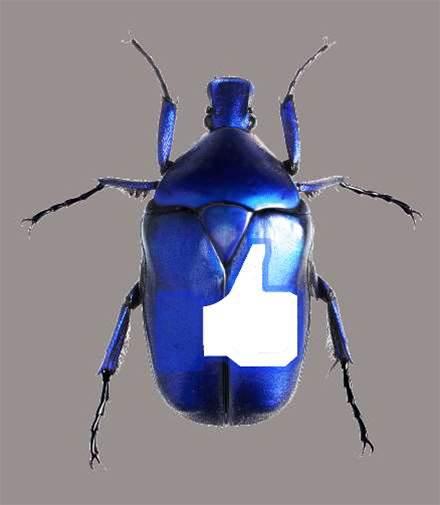 Researcher demos Facebook bug with Zuckerberg Wall post