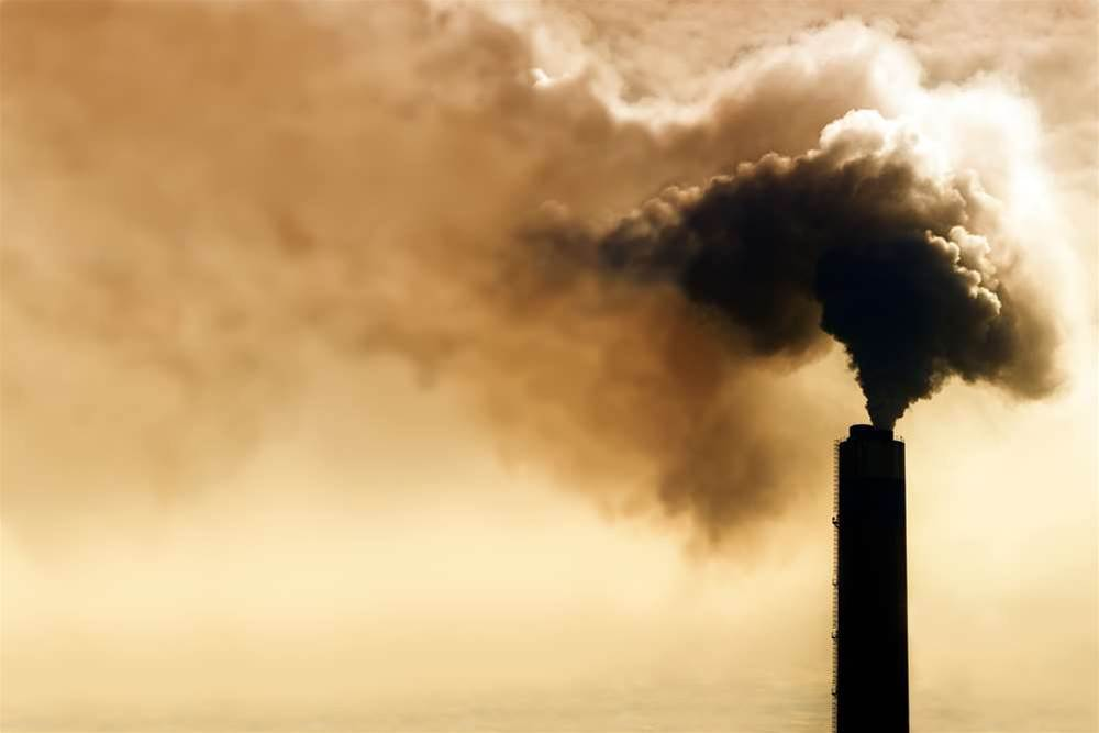 Pass on carbon tax savings, warns ACCC