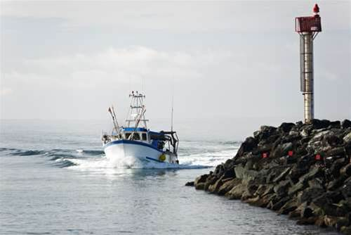 Fisheries WA to revamp ICT network
