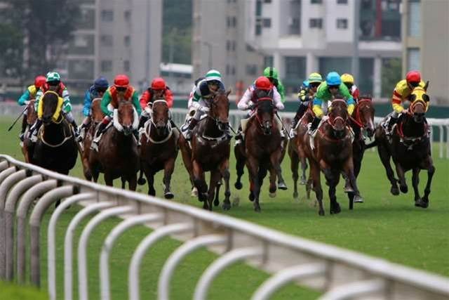 Bookies call on extra IT, bandwidth for Cup day