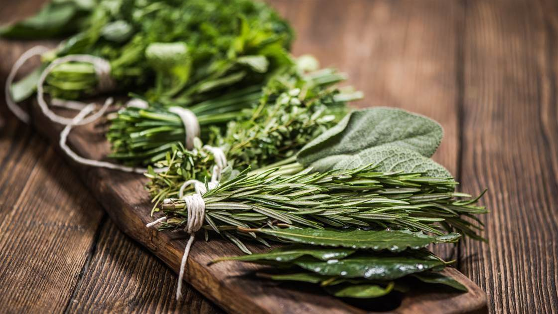 Do Stress-Busting Adaptogens Actually Work?