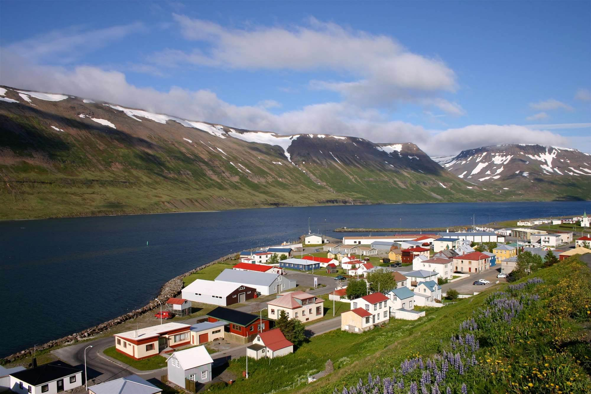 Iceland woos power-hungry data centres
