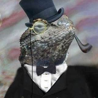 DDoS it matter what motivates Lizard Squad?