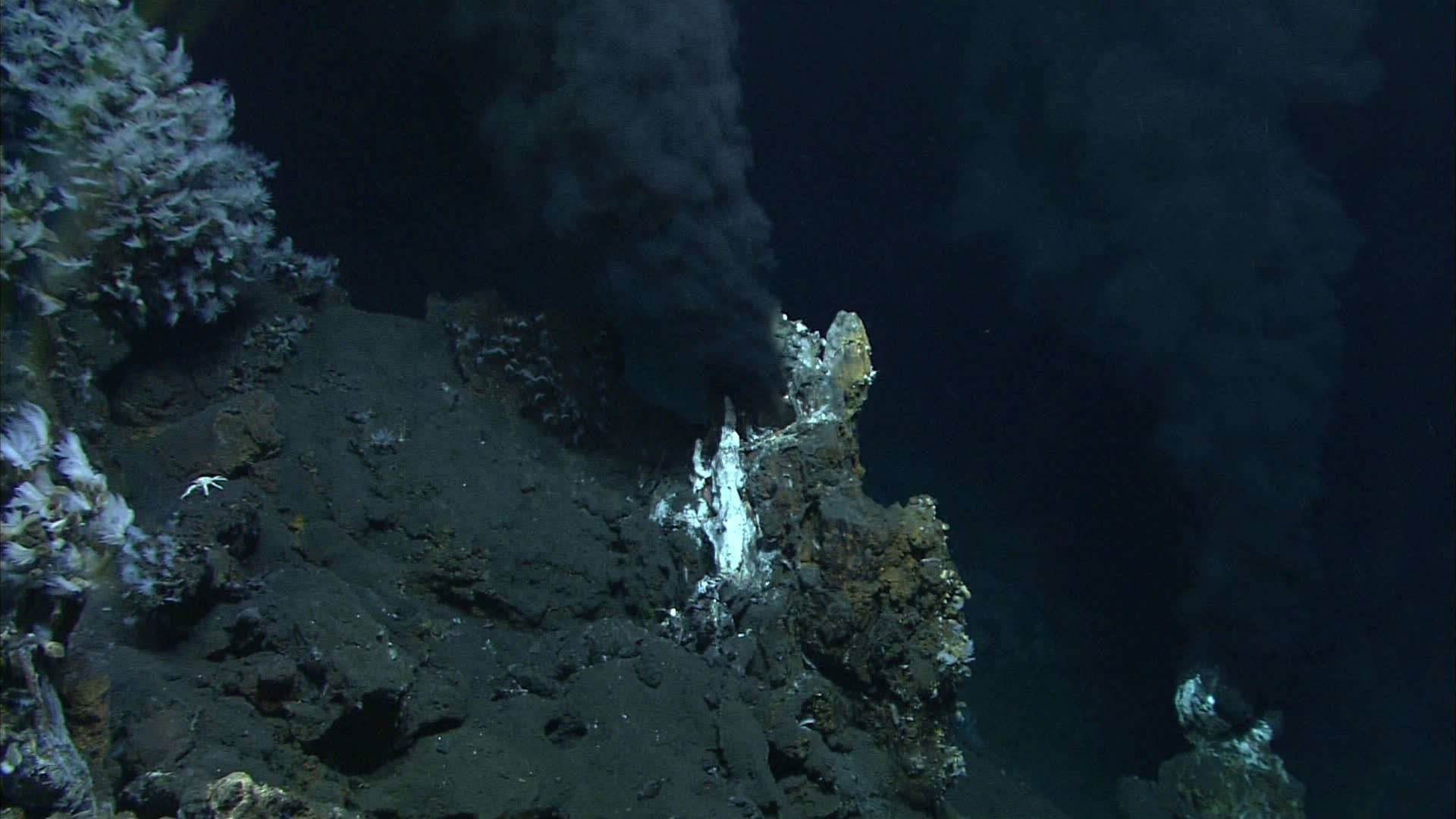 Deep-Sea Dwellers Make A Natural Antibiotic