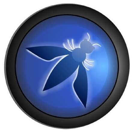 OWASP Top 10 released for 2013