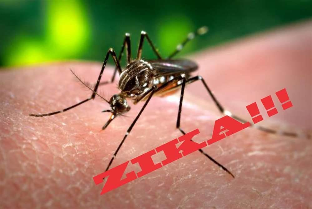 "Can We Prevent Zika From Becoming The Next ""Fearbola""?"