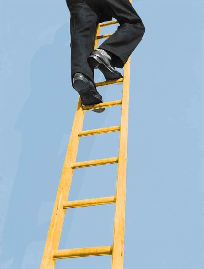 Mortgage Choice promotes CIO