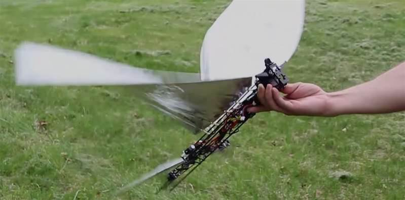 Hybrid Bird Drone Flaps Through The Sky