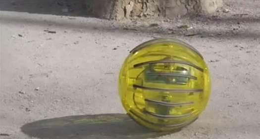 The Science Of Hamster Balls: New Rolling Robot Could Help Farmers