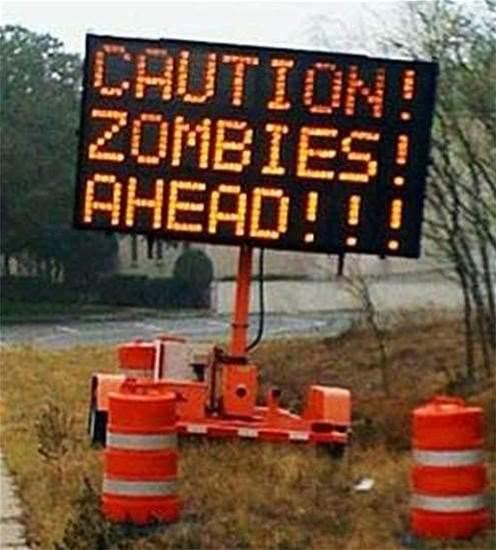Default password bug prompted US zombie alert