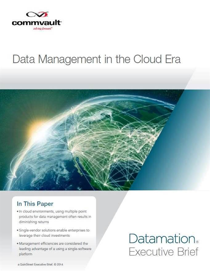 Data Management in the Cloud Era