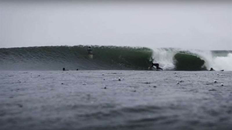 Taylor Knox Heads to Ireland
