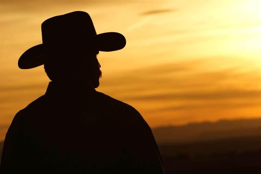 Fibre mandate will attract cowboys: Budde