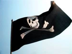Pirate hound reported for shoddy IT systems