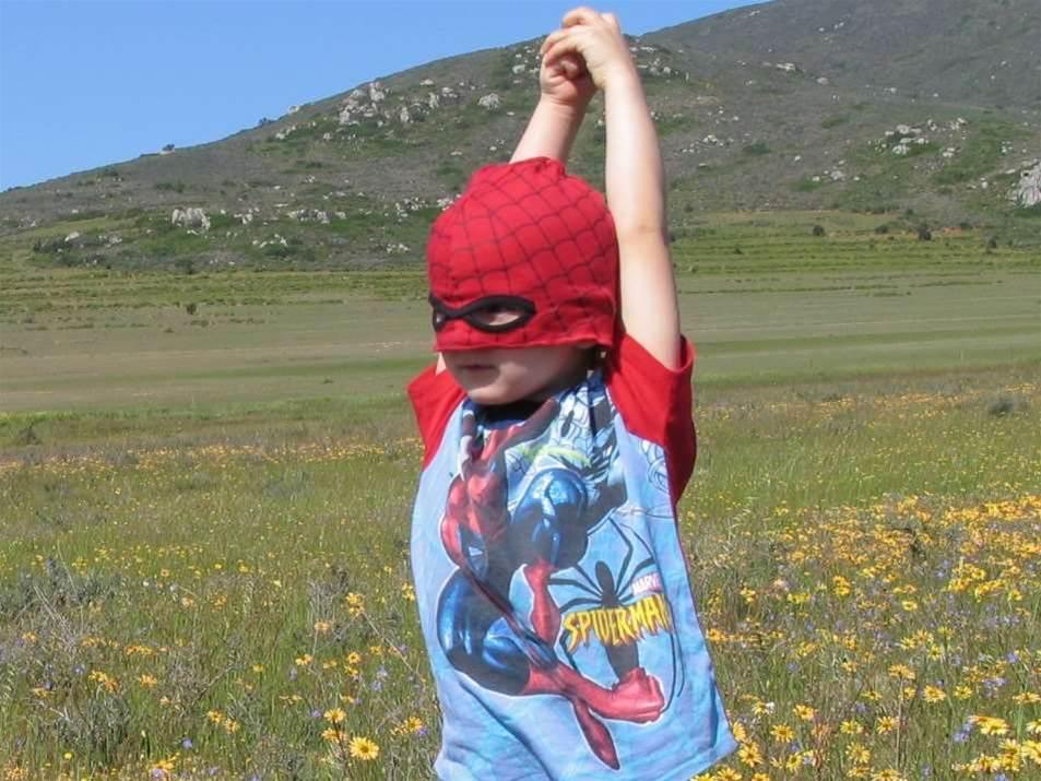 Scientist suggests super-sticky Spidey suit
