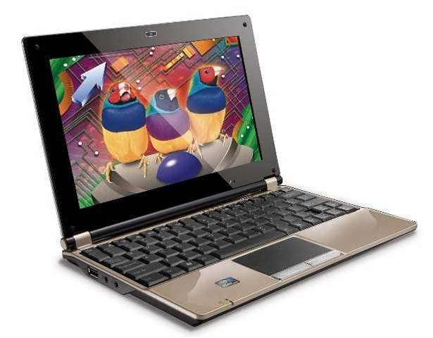 Viewsonic enters the netbook market